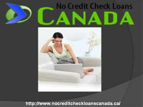 Instant Online Payday Loans - Canada Payday Loans Bunny!!!