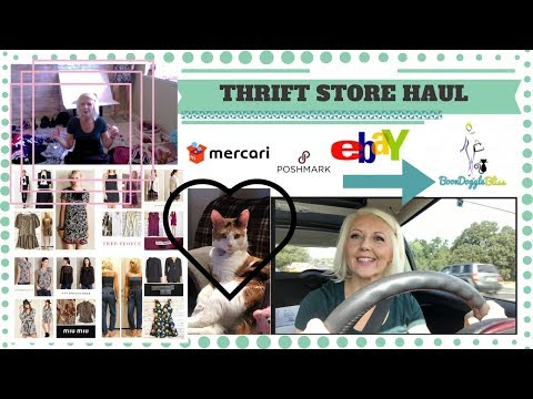 Reseller Vlog - I'm Back w/ a Goodwill Thrift Haul