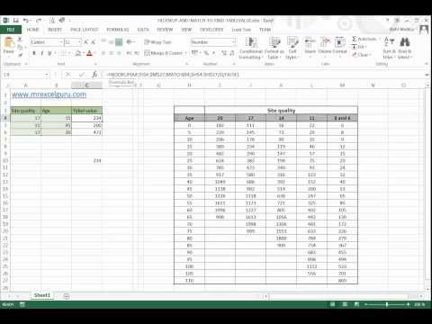 Excel 2013 English: Using MATCH() and HLOOKUP() to find table value