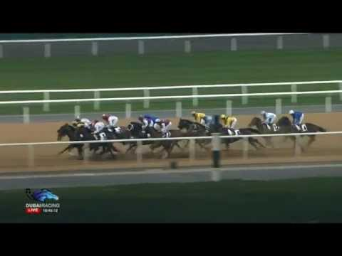 29.01.2015 Meydan (Dubai/UAE) 1.Race Emirates Global Aluminium - Handicap 1.900 m