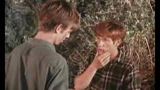 The Waltons - Ben and Jim Bob Fight