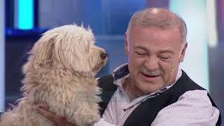 Al Pazar - Familja dhe pjestari i ri - 8 Dhjetor 2018 - Show Humor - Vizion Plus