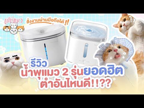 (รีวิว) น้ำพุแมว 2 รุ่นยอดฮิต ตำอันไหนดี!!?? | Paymeaw เปย์แมว