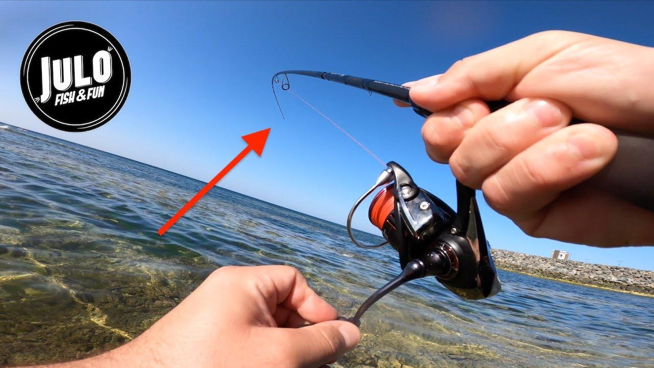 QUELLE PUISSANCE ces poissons ! Pêche aux leurres en surface