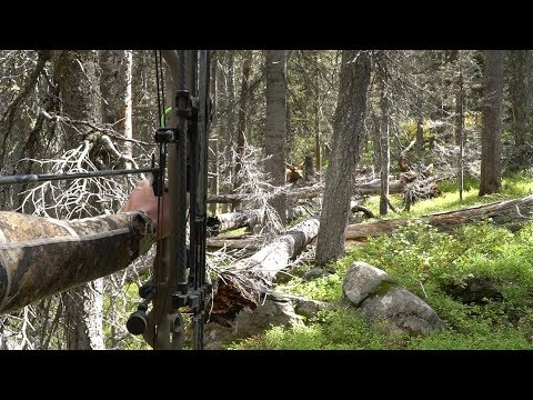 SCREAMING BULLS in the COLORADO BACKCOUNTRY- EP 22 - LAND OF THE FREE