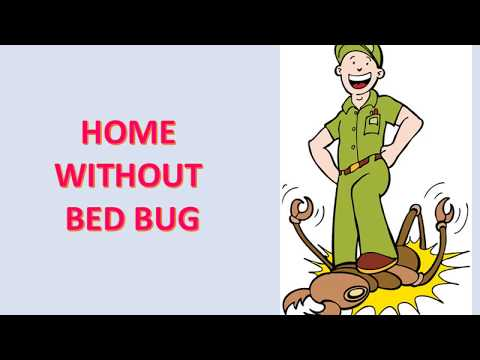 Lawrence Bed Bug Exterminator – Bed bugs Removal Service in Lawrence