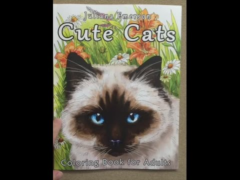 Cute Cats Coloring Book For Adults Flip Through
