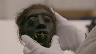DNA Analysis Reveals Troubling News About Shrunken Heads