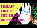 Simian Line Part 2. Palmistry Lesson
