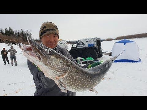 Приключения ШЕРП в Якутии -рыбалка 3 часть/ Аdventure of Sherp in Yakutia fishing -3 p