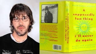 """Baixar David Foster Wallace interview on """"A Supposedly Fun Thing"""" on WPR (04/1997)"""