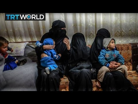 What should happen to Daesh fighters and their families?