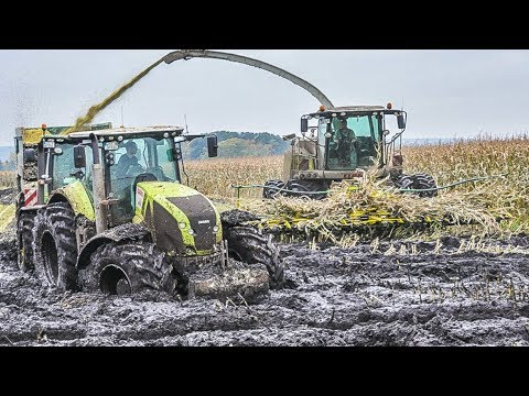 Mudslinging with John Deere tractors | chopping maize in the mud | Claas Jaguar