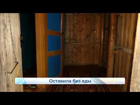 Трагедия с запертыми дома детьми чуть не повторилась  Новости Кирова  26 02 2020