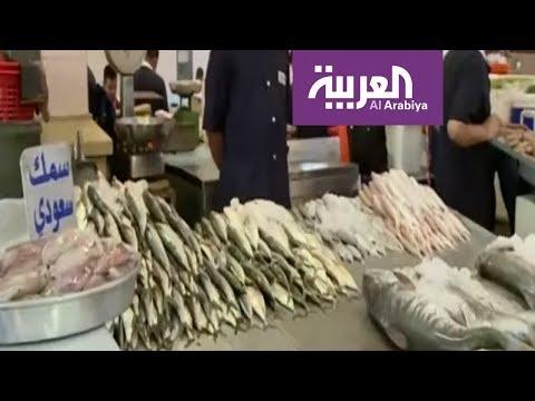 صباح العربية | ركود سوق السمك الكويتي في موسم تكاثر الزبيدي  - نشر قبل 3 ساعة