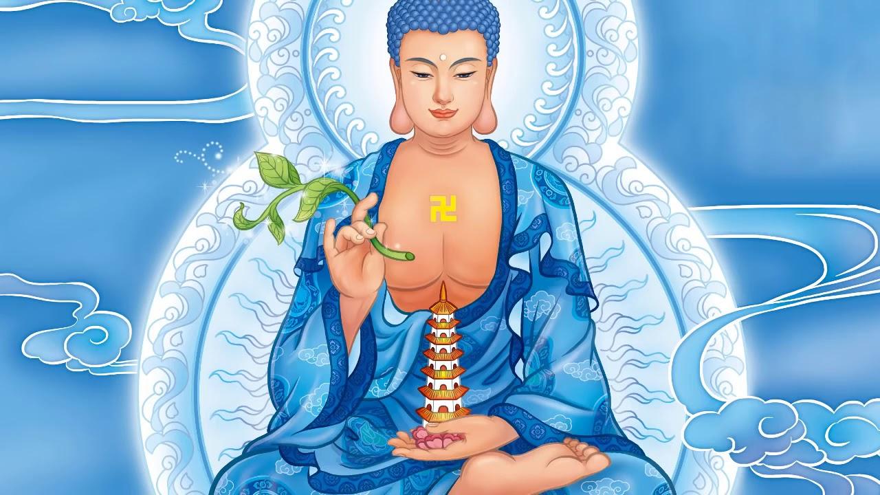Đừng làm đau người thương mình   Phật học và đời sống