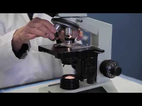Microscope Crash Course for Fecal Egg Counting