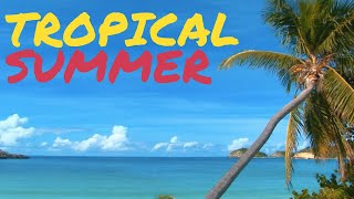 Tropical Summer Upbeat Background Music 1 Hour
