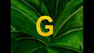 Английский алфавит для детей видео. Буква G