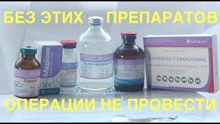 Наркоз, седация, обезболивание животных перед операциями