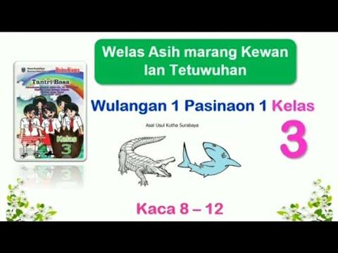 Download buku bahasa jawa kelas 3. Tantri Basa Kelas 3 Wulangan 1 Pasinaon 1 Hal 8 12 Bahasa Jawa Kelas 3 Youtube