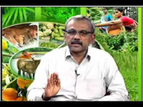 22 09 2015 live phone in programme