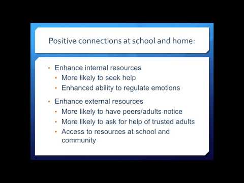 The Pressures of Perfection and Suicide Prevention:Intervention in Youth