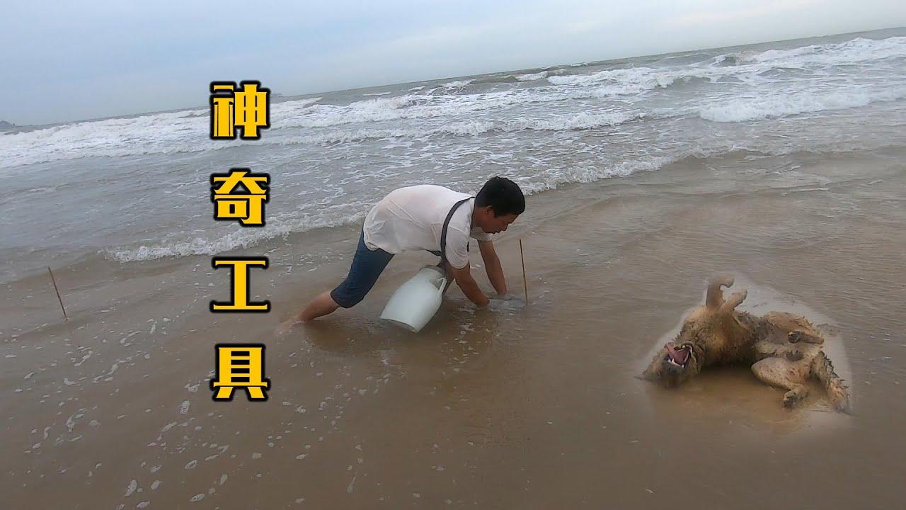 阿雄带上神奇工具赶海,将整片海岸全全围住,引出上百只海鲜中招