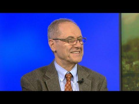 Edmund Ghareeb discusses Turkey's Operation Olive Branch