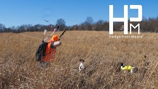 Pheasant Hunting with a Bow + Shed Hunting