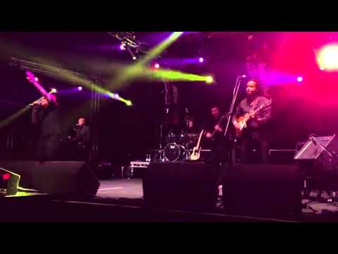 """The ub40 experience live @ Tribfest 2015 """"can't help falling in love"""""""