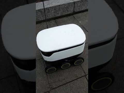 Delivery robot in Milton Keynes, England
