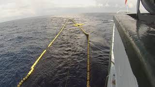 Maniobra de retroceso para liberar delfines y porpoises del cerco Vista desde el barco