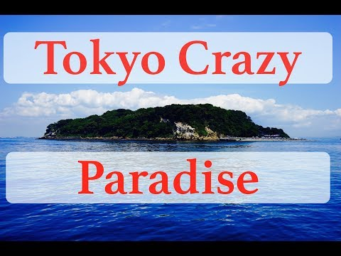Sarushima Island Trip | Hot Summer Beach Spot Near Tokyo