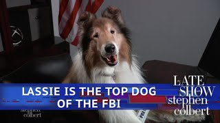 'Lassie' Returns To Television As The Top Dog In The Russia Investigation