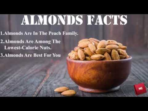 Almonds Facts | Nut Crunch | Online Dry fruits Store