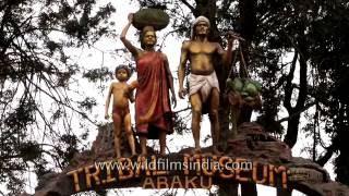 Popular Videos - Araku Valley & Tribal Museum Araku