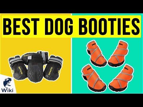 10 Best Dog Booties 2020