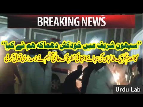 sehwan sharif bomb blast lal shahbaz qalandar blast diash ka ilan ● Urdu Lab Latest News 30