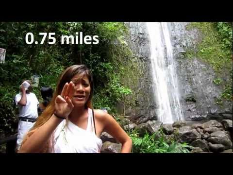 Learn more ASL signs in hiking to Manoa Falls!
