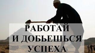 видео 16.Социальная работа как социальный институт.