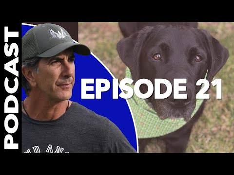 How to Have a Healthy Relationship with Your DOG - Dog Training Video Podcast Episode 21