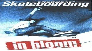 Baixar Transworld - In Bloom (2002)