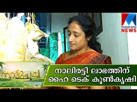 Bio Hi- Tech Mushroom Cultivation   Manorama News   Nattupacha