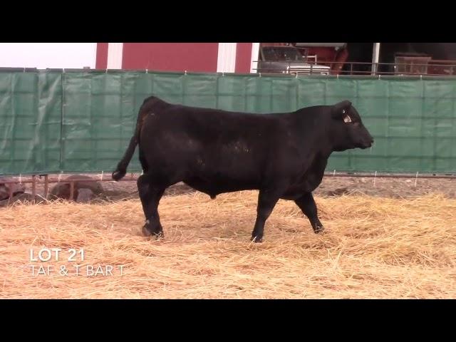 Taliaferro Angus \u0026 T Bar T Angus Ranch - 21