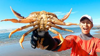 The BEST Way t๐ Catch Dungeness Crab at the Beach?! Not Snaring? (Season 1 Episode 13)