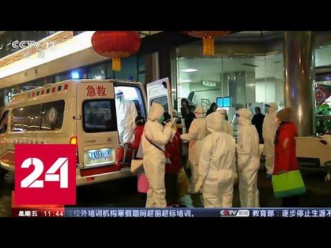 Из-за коронавируса год Крысы пришел в Китай без масштабного празднования - Россия 24