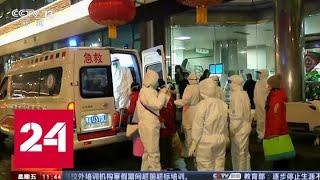 Смотреть видео Из-за коронавируса год Крысы пришел в Китай без масштабного празднования - Россия 24 онлайн