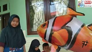 HAI TAYO SONG | Amazing Balloon Helium Play Air Swimmer Remote Control Nemo - Flying Clownfish