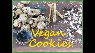 Vegan Oatmeal Raisin Cookies - The Frugal Chef